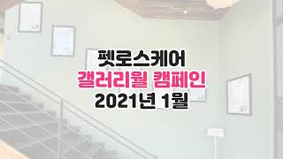 밀양양산울산 애완동물장례 펫로스케어 - 갤러리월 1월 …