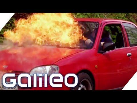 Motorexplosion, Brücke aus Klopapier, schneller Klo-Gang | Finde den Lügner | Galileo
