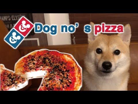 ピザが大好きな犬、ブロッコリーを食べまくる