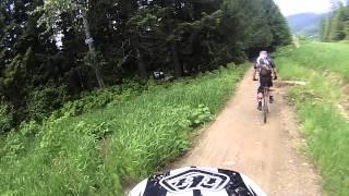 Whistler Bike Park : Bear On Bline