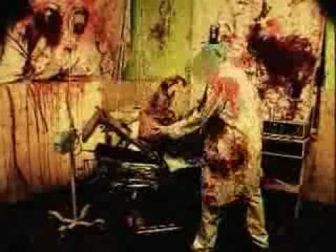 Trans Allegheny Lunatic Asylum 2012 Commercial Delirium Youtube