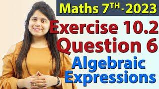 Q 6, Ex 12.3 - Algebraic Expressions - Chapter 12 - Maths Class 7th - NCERT