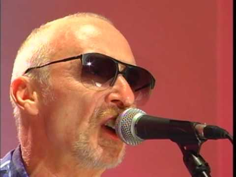 Temporary Beauty performed by Graham Parker