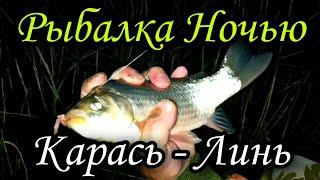 Рыбалка на Крупного КАРАСЯ и ЛИНЯ Ловля ЛИНЯ и КАРАСЯ на Озере Рыбалка На Удочку в ИЮНЕ 2020