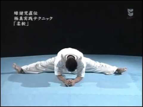 Japanese TV show feat. karate