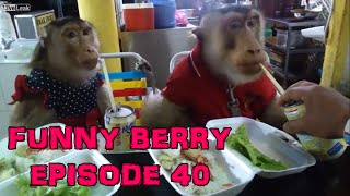 Weekly fails 2015, funny interesting videos - Epic Fail Win || Funny Berry Compilation Episode 40