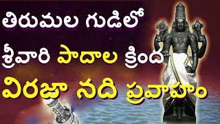 తిరుమల గర్భగుడిలోఅద్భుతం శ్రీవారి పాదాలవద్ద నది/Unknown Facts About Tirumala In telugu/Telugu media