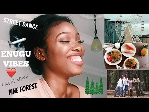 MARCH HIGHLIGHTS | PINE FOREST, DRINKING PALM-WINE,  ENUGU MEMOIRS