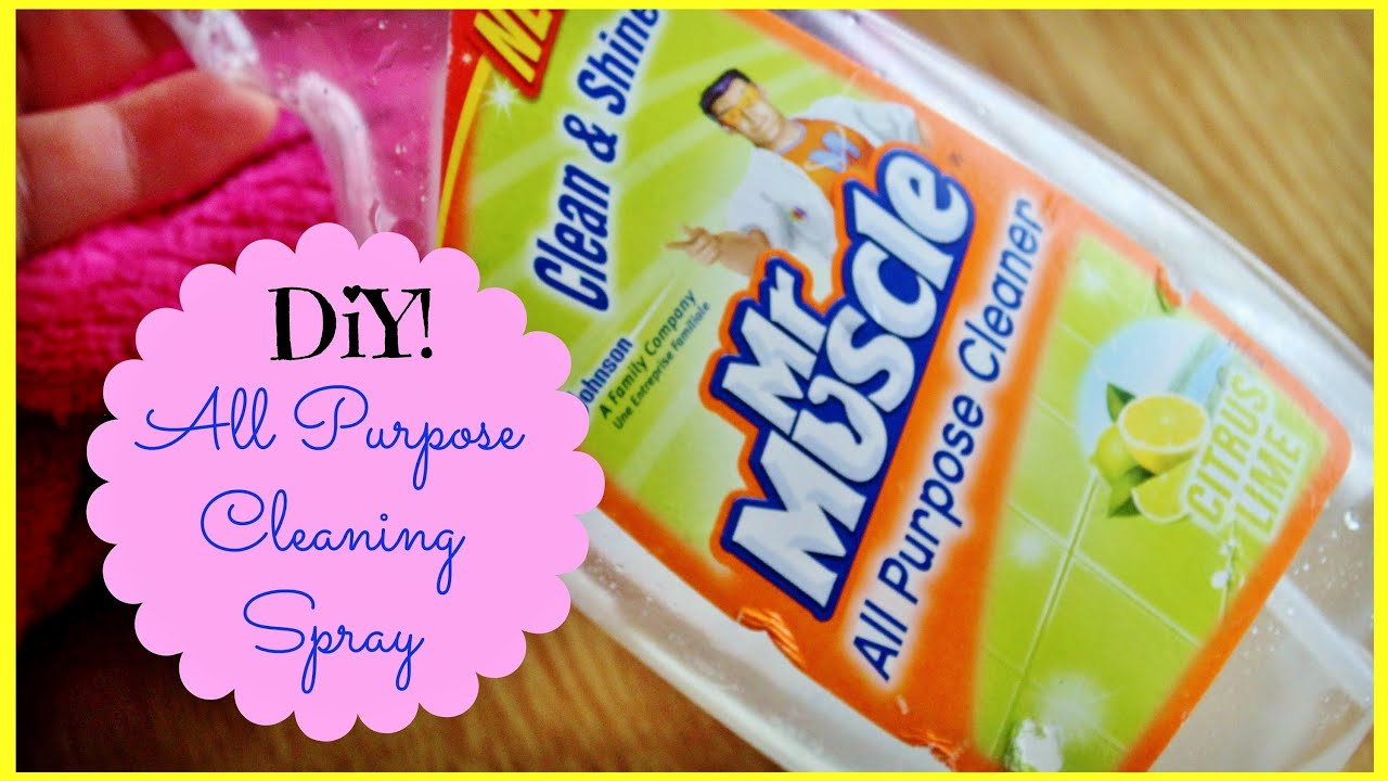 DIY: Homemade All-Purpose Cleaning Spray (Very Inexpensive & Non-Toxic)