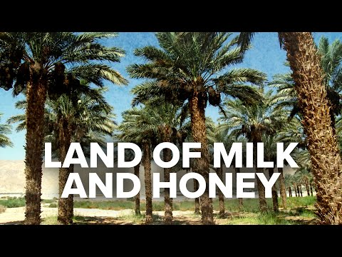 Virtual Israel Tour Day 11: Israel - The Land Of Milk And Honey