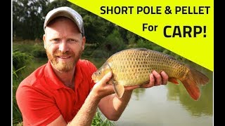 POLE FISHING with HARD PELLETS for CARP - Step  by Step with Rob Wootton