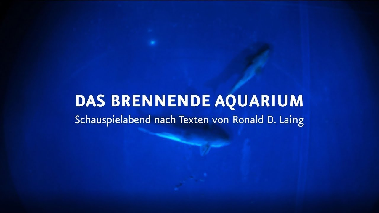 DAS BRENNENDE AQUARIUM - Staatstheater Cottbus (Trailer)