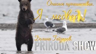 Опасная прогулка. Долина Гейзеров// Я  медведь! #3//Детям о животных//PRIRODA SHOW