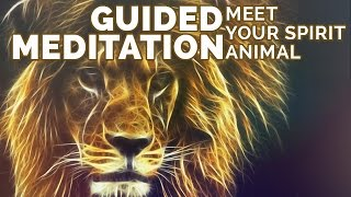 Meditation to Find Your Spirit Animal: What is My Spirit Animal? Relaxing Visualization
