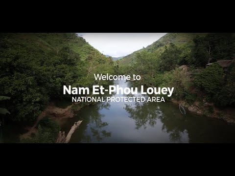 Nam Nern Night Safari in Laos
