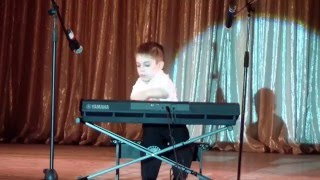 Плужников Данил (синтезатор)