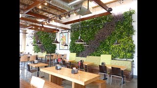 Brome Burgers & Shakes Green Walls - Project of the Week 7/10/17