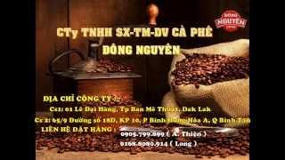 Tìm đại lý phân phối cà phê trên toàn quốc - coffee Đông Nguyên