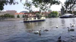 Влтава в майский выходной(, 2016-05-29T15:47:18.000Z)