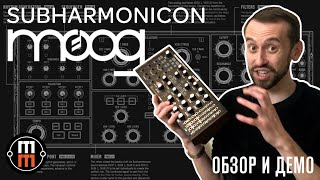 Moog Subharmonicon - подробный обзор и демо