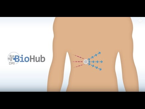 DRI BioHub - Reaching the Biological Cure