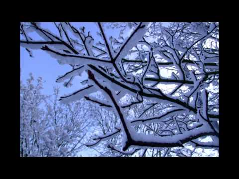 Sinead O Connor  Silent Night HD with Snow Photos in the UK