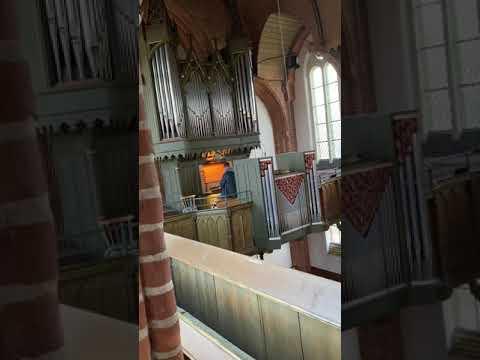 orgelgruß-aus-isenbüttel,-st.-marien---der-mond-ist-aufgegangen