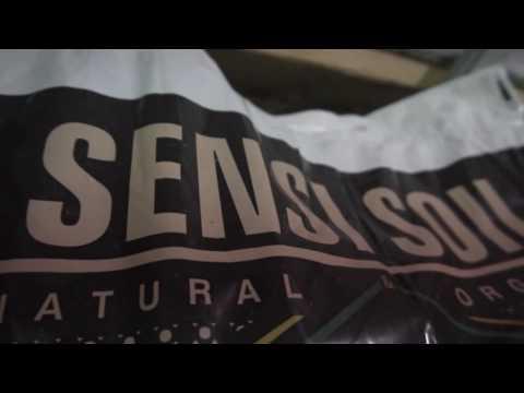 Sensi Soil | Water Only Organic Soil | GLGCTV