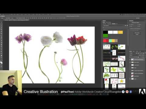 Paul Trani Live Stream: Vector Illustration in Illustrator & Photoshop