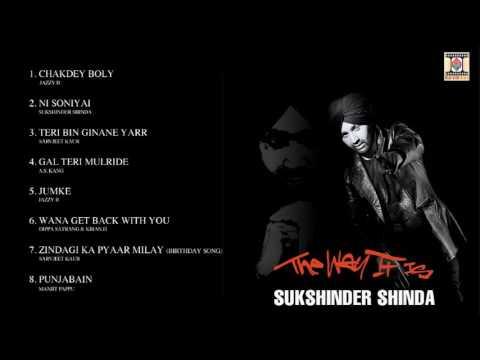 THE WAY IT IS - SUKSHINDER SHINDA - FULL SONGS JUKEBOX
