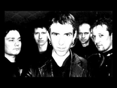 New Model Army... Stupid Questions
