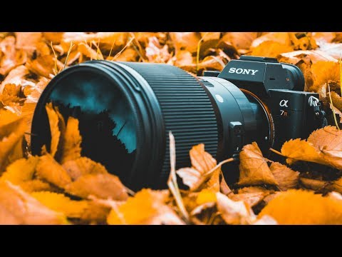 AUTUMN PHOTOGRAPHY - Photoshoot + Editing Tutorial thumbnail