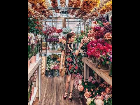 Flowers Shop L Интерьеры цветочных магазинов для вдохновения