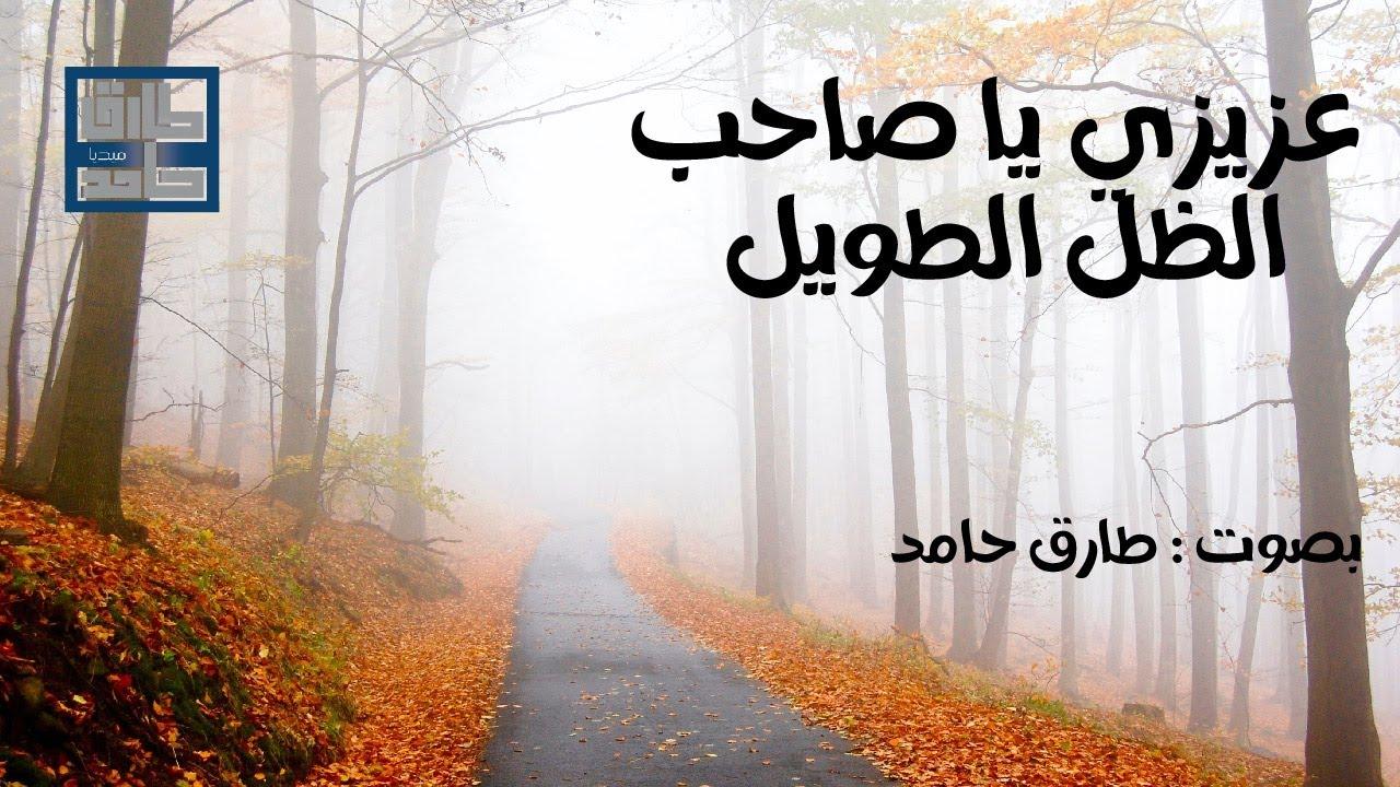 عزيزي يا صاحب الظل الطويل | طارق حامد