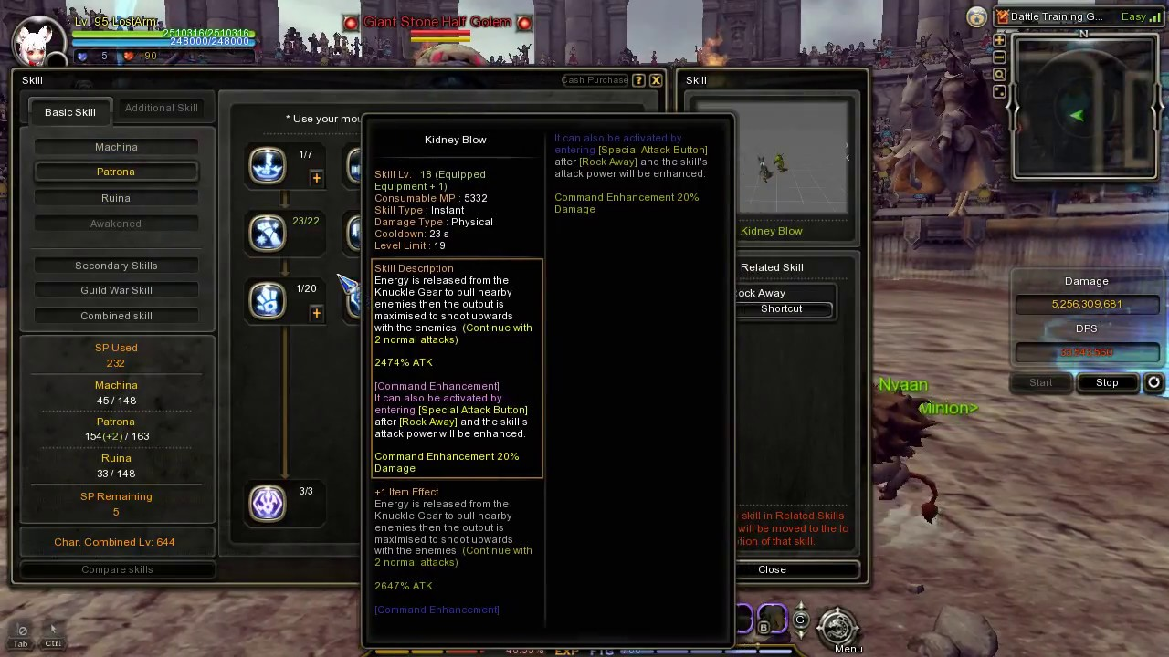 Dragon Nest SEA Ruina Equipment/skill build/and the DPS with