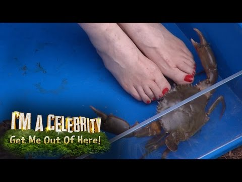 Lady C's Toes Get Pinched By A Crab | I'm A Celebrity... Get Me Out Of Here!