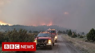 US Bootleg Fire burns area larger than Los Angeles  - BBC News