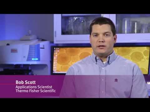 Growing Spheroid Cultures For Cancer And Stem Cell Research