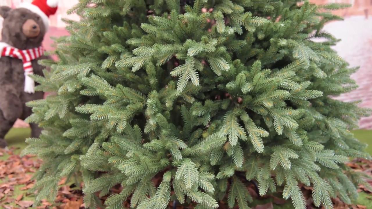 Alberi Di Natale Artificiali Di Lusso.Albero Di Natale Realistico Lincoln In Pe H 180 210 240 Cm Youtube