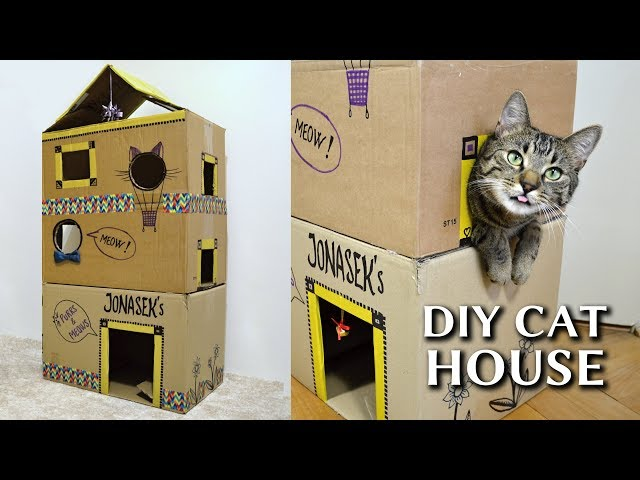 EPIC cardboard cat house DIY