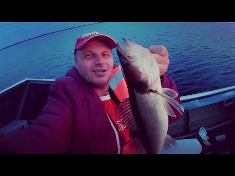 Рыбалка в Карелии 2019 летом на озере Сямозеро. Рыбалка с лодки. Троллинг на судака и щуку.