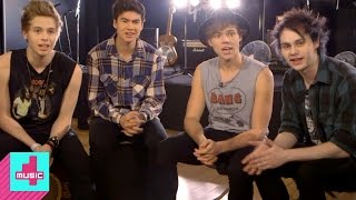 5SOS: What Would You Say to A Talking Cow?