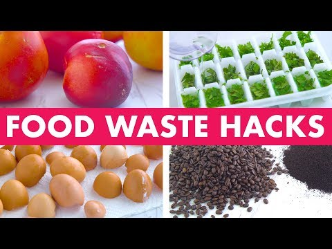Food Waste Hacks! - Mind Over Munch