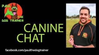 Canine Chat Ep 6 W/ Stylin'dogs Professional Grooming