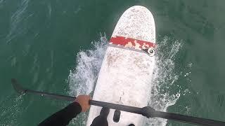 만리포 서핑, 패들보드 서핑을 하다.