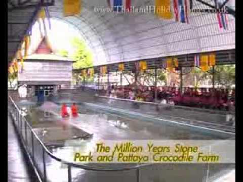 Thailand Travel Video – Attractions Pattaya.flv