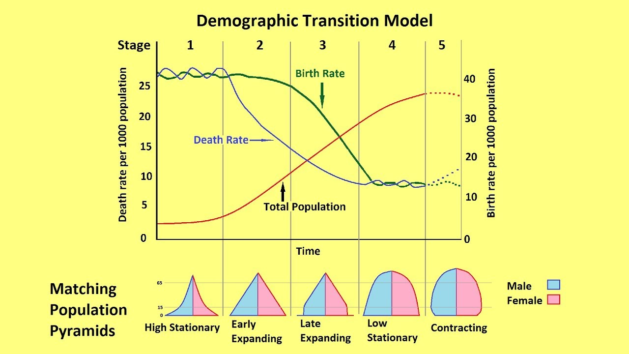 why populations grow and the demographic transition model youtube