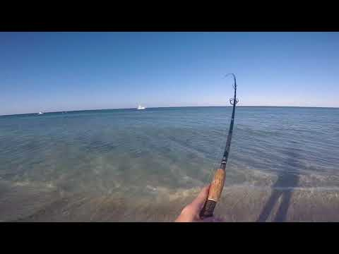 Beach Fishing For Whiting And Flathead (Eagle Bay, WA)