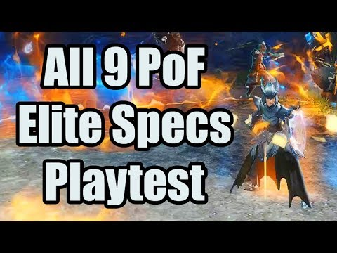 RAW Elite Specialization Playtest | Guild Wars 2 Path of Fire