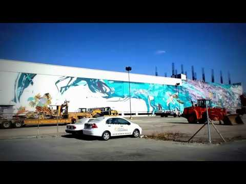 Largest Graffiti in Puebla, Mexico / Street Art / Art Urbain / Arte Urbano